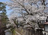 高山 (3)